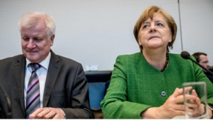 德國內政部長澤霍費爾與總理默克爾資料圖片