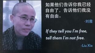 刘霞,已故诺贝尔和平奖得主刘晓波的妻子2017年7月