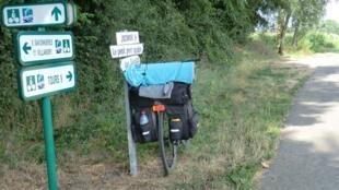 Passeios de bicicletas à beira do rio Loire.