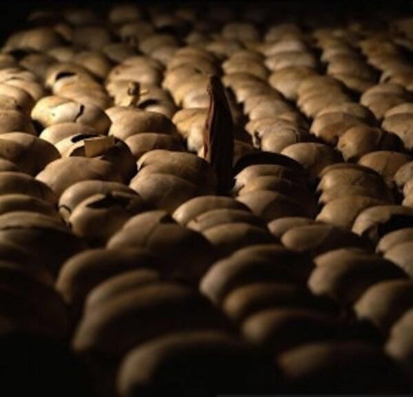 Rwanda Genocide Memorial 1994