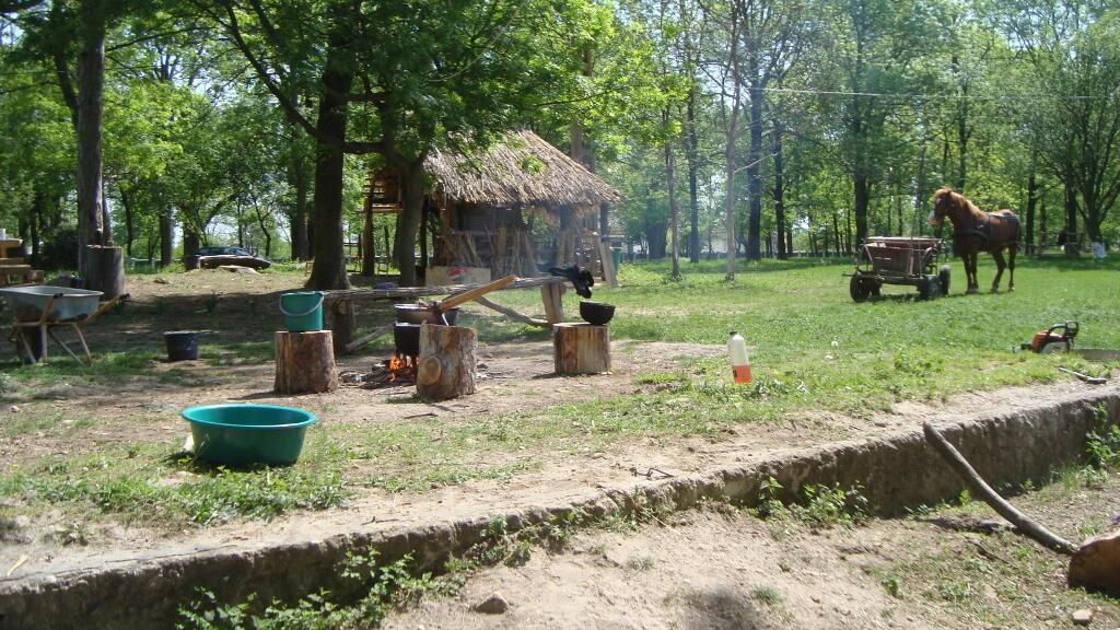 L'association Perticari-Davila redonne vie au manoir avec une ferme bio et des ateliers pour relancer l'économie locale.