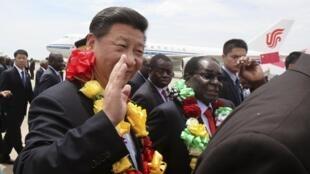 習近平抵達哈拉雷機場穆加貝親自到場迎接