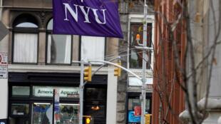 Le cursus de l'école de médecine de la New York University, institution privée, dure quatre ans. Elle compte aujourd'hui 531 élèves, tous niveaux confondus. 美国纽约大学