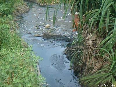 Ô nhiễm nguồn nước do chất thải công nghiệp ở Việt Nam.