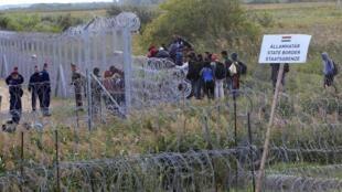 Венгро-сербская граница, 15 сентября 2015.