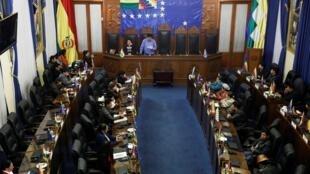 El senado de Bolivia en sesión, el 14 de noviembre de 2019 en La Paz.