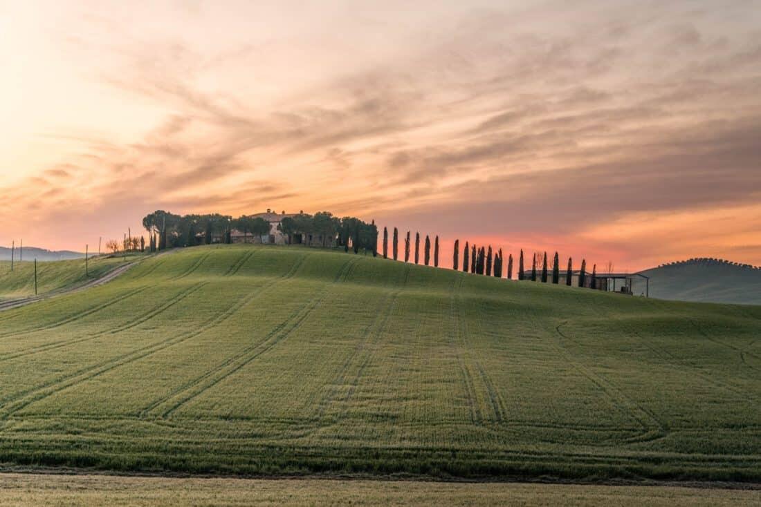 El modelo propuesto para el 2050 se basa en tres ejes: cambio de dieta, agroecología y circularidad.