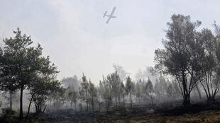 A firefighting tanker plane flies over forest devastated by wildfire near Lacanau