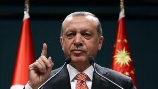 Des purges tous azimuts ont été lancées en Turquie par le président Erdogan, après le coup d'Etat raté du 15 juillet 2016.