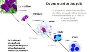 Particules élémentaires, CERN.