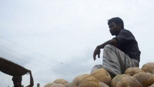 Un Bangladeshi assis sur une pile de citrouilles, au marché de Dhaka le 9 septembre 2013.