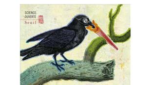 Le corbeau qui tenait en son bec un outil, et autres nouvelles histoires naturelles - Jean Deutsch.