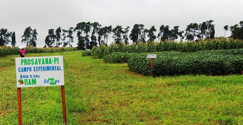 Moçambicanos temem que suas terras sejam entregues aos mega-investimentos.