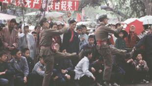 Một khung cảnh thường ngày trong Cách mạng văn hóa, dưới ống kính của Solange Brund.