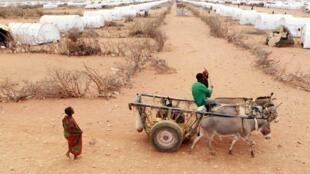 Il s'agit de la troisième sécheresse sévère après celle de 2011 et celle de 2017. (image d'illustration)