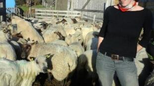 Stephanie Maubé, éleveuse de brebis dans la Manche.