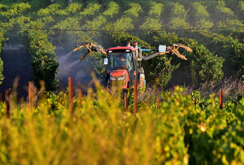 france-pesticides