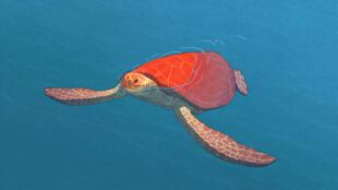 """""""A Tartaruga Vermelha"""", longa de animação de Michael Dudok de Wit."""