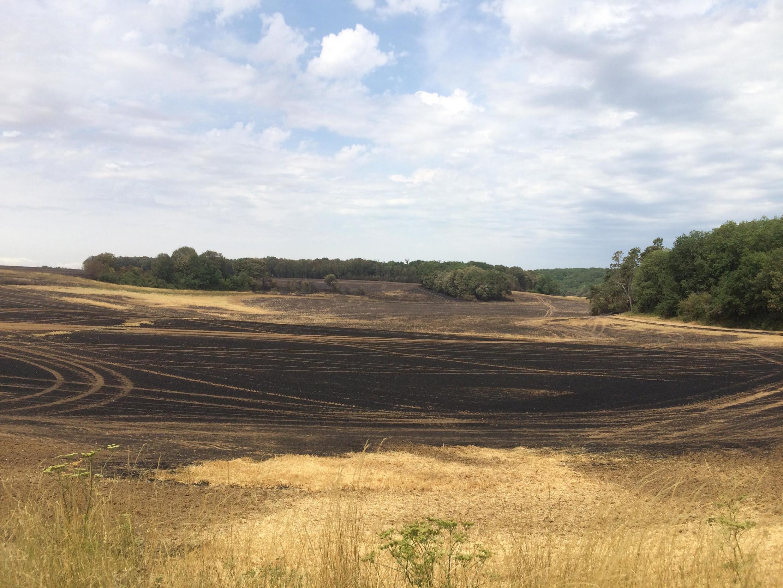 160 hectares pegaram fogo na cidade de Forêt-le-Roi