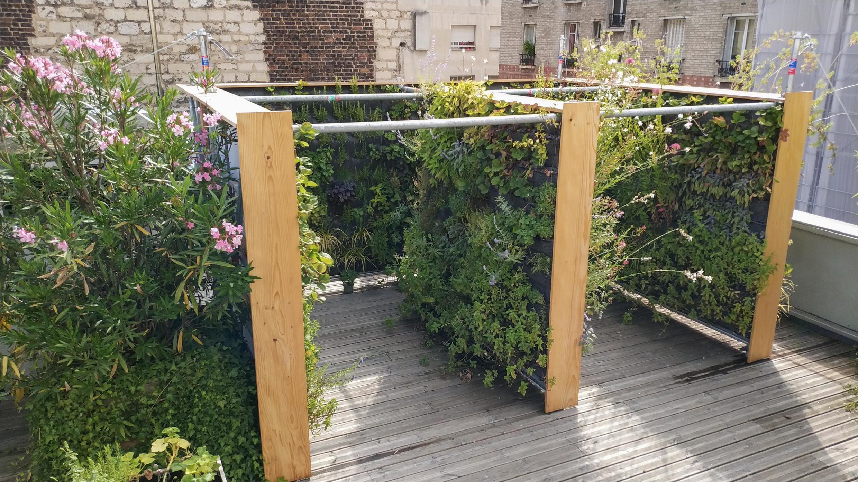 Merci Raymond interviene en diferentes contextos urbanos. Aquí un jardín y huerto vertical en una azotea.