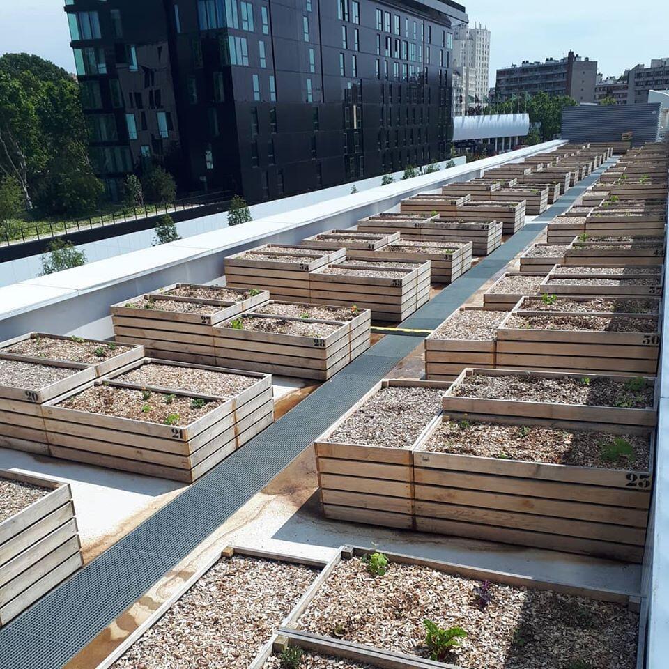 Nos telhados do Parque de Exposições de Paris, jardins compartilhados podem ser alugados por moradores ou chefs da região.
