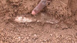 Découverte de la clavicule enterrée