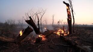 Un feu dans la zone de préservation écologique de la nation Guarani, Nembi Guasu, en Bolivie, le 29 août 2019 (photo d'illustration).
