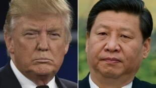 Os Presidentes, Donnald Trump, dos Estados Unidos e  Xi Jinping, da China