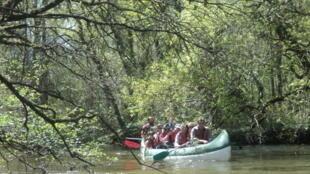 El parque Landes de Gascogne propone distintas actividades para descubrir la naturaleza, como puede verse en esta foto promocional del sitio web.