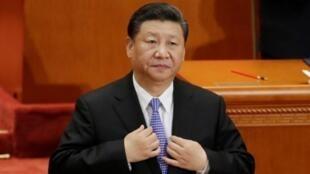 中國國家主席習近平在人民大會堂  2018年5月4日