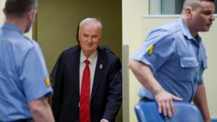 Ратко Младич в здании суда в Гааге, 22 ноября 2017 года.