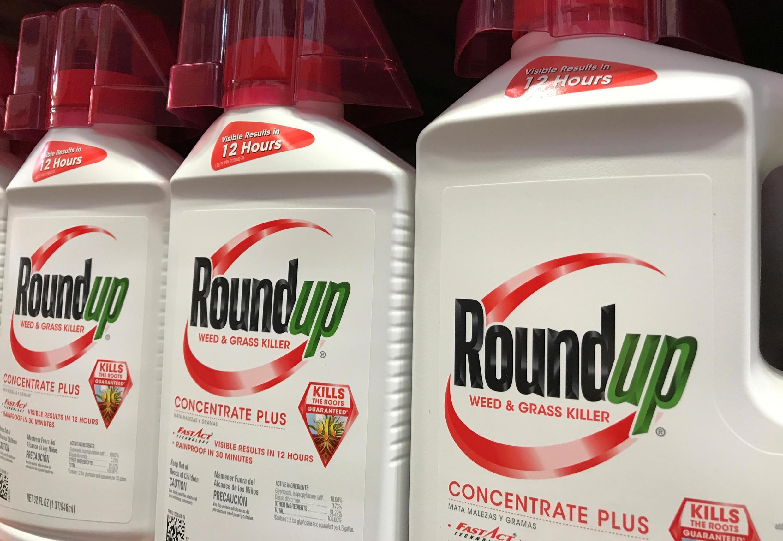 El Roundup ha sido clasificado como un probable carcinógeno por un organismo de la OMS.