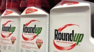 Le Roundup a été classé comme un produit probablement cancérigène par une instance de l'OMS (image d'illustration).