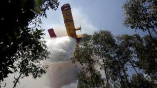 葡萄牙 消防飛機努力撲滅森林大火 2017年6月20日