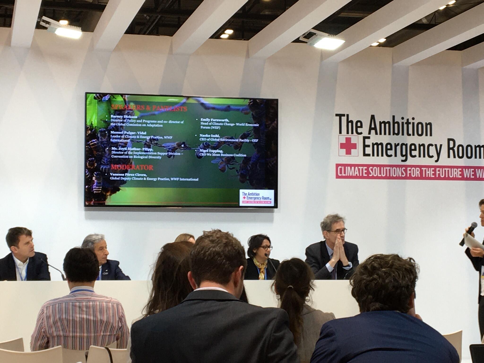 世界自然基金會(WWF)的討論議題圍繞如何更多用自然的方式生產向綠色經濟過渡
