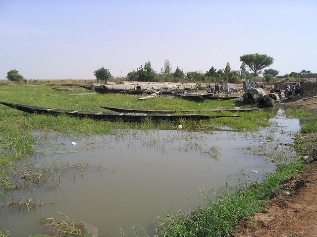 Des pirogues sur l'un des bras du fleuve Niger à Djambakourou, cerlce de Mopti à Konna au Mali.