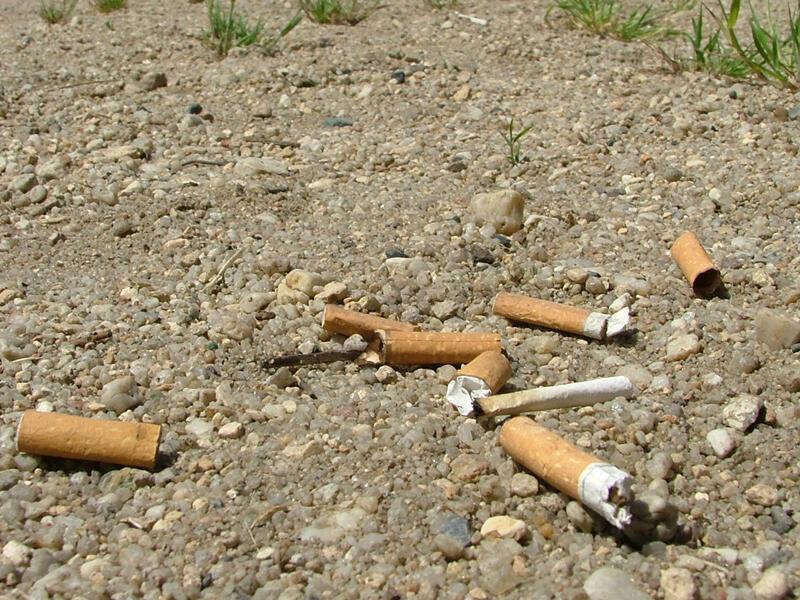 Bitucas de cigarro levam até 12 anos para se decomporem.
