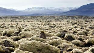 Le promoteur chinois Huang Nubio se disait attiré par la beauté des paysages islandais.