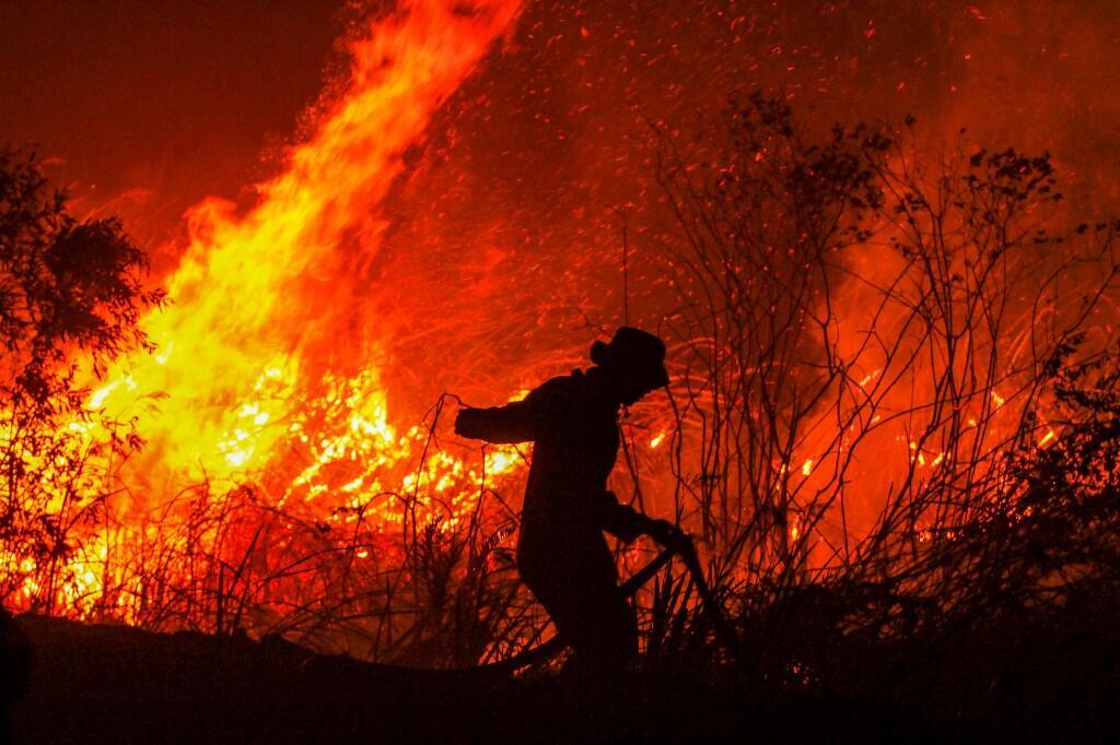 Un pompier éteint un incendie dans une forêt du village de Ramboutan, à Ogan Ilir, sur l'île de Sumatra, le 11 septembre 2019.