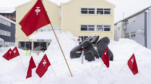 Flags of the Inuit Ataqatigiit party in Greenland ahead of the parliamentary election