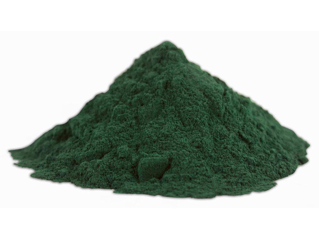 Un tas de spiruline, une algue aux vertus nutritionnelle.