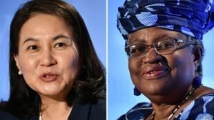 韩国和尼日利亚候选人资料图片
