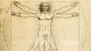 """O """"Homem Vitruviano"""" mostra as proporções humanas, segundo Leonardo da Vinci."""