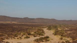 Le massif de Tighargharoued dans la région de Tessalit.