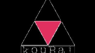 L'association Kouraj lutte contre l'homophobie en Haïti.