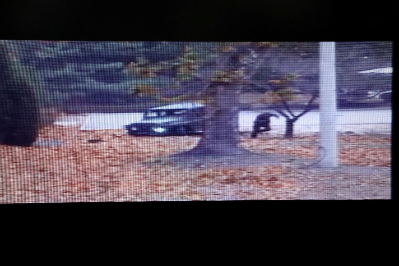 Soldado norte-coreano corre rumo à fronteira em imagens da CCTV apresentadas pelo Ministério da Defesa da Coreia do Sul a 22 de Novembro de 2017.