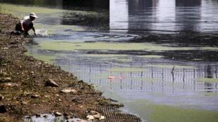 一名妇女在北京郊区高度污染的河中洗衣服。摄于2011年8月16日。