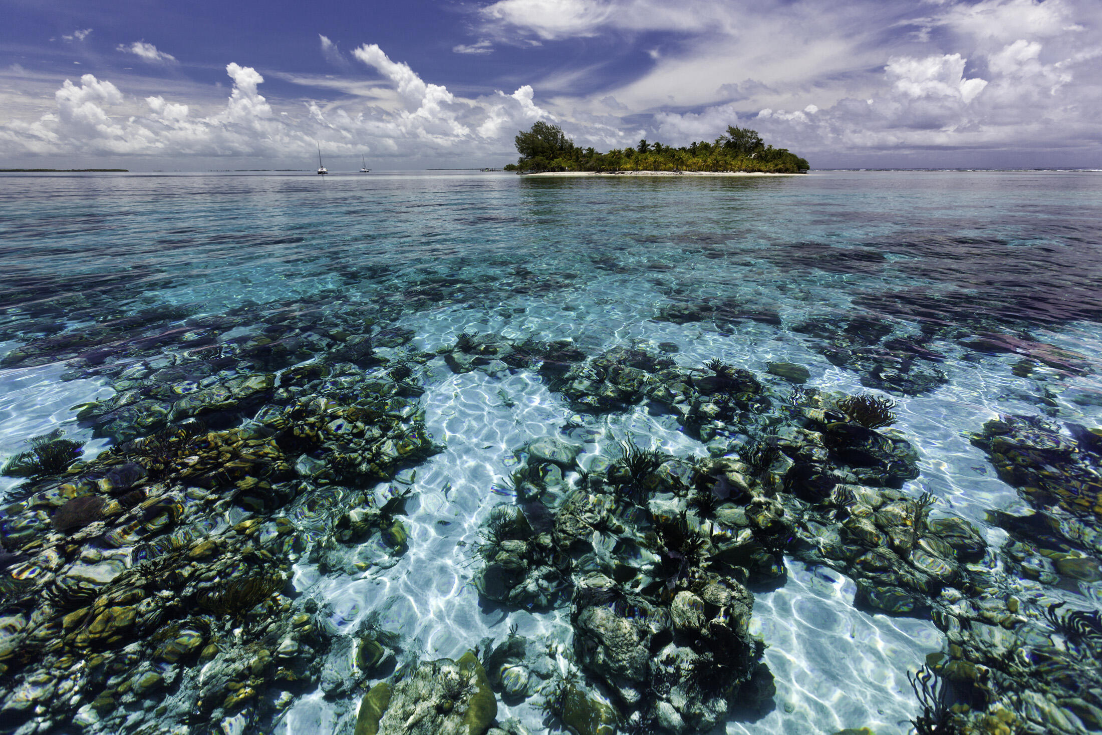Arrecifes de Belice, Patrimonio Mundial Natural de la UNESCO.