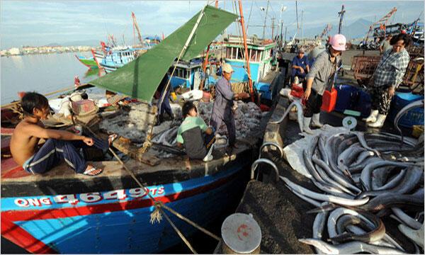 Việt Nam tố cáo tàu Trung Quốc đâm chìm tàu cá của ngư dân Đà Nẵng - Reuters