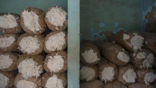 Des sacs remplis de coton egyptien.